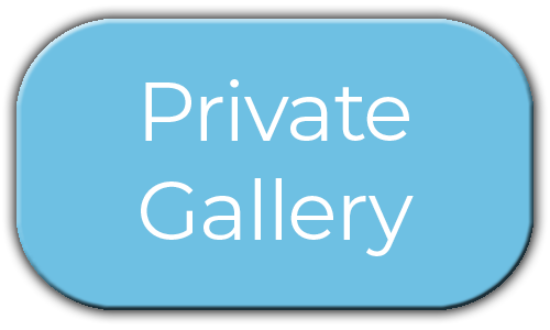 Milestone Photo Booths NJ Add On Upgrade Accessory Private Gallery Blue Circle Events Keyport New Jersey New York Pennsylvania